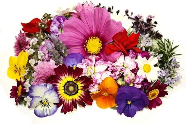 premium-flowers-assortment